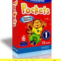 flash card pocket1